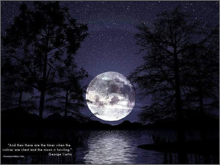 The Story of Wolf and Moon – Niki Flow